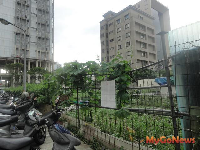 松勇路的豪宅林立,但一塊暫被作為菜園土地在5月27日法拍流標。 MyGoNews房地產新聞 市場快訊