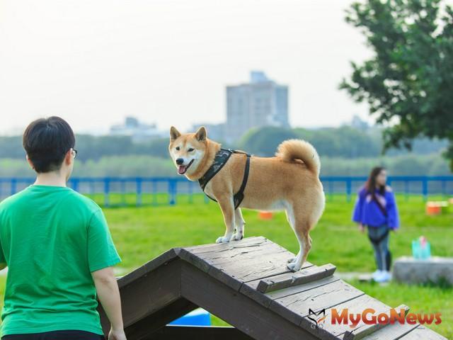 公寓大廈住戶飼養寵物者,請注意勿妨礙公共衛生、公共安寧及公共安全! MyGoNews房地產新聞 市場快訊